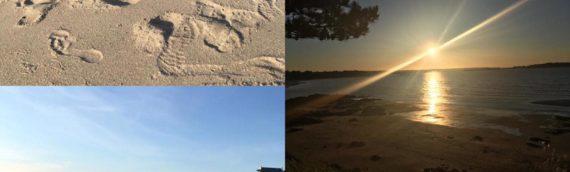 Cours de Kundalini Yoga à  la plage. Du 17 au 21 août